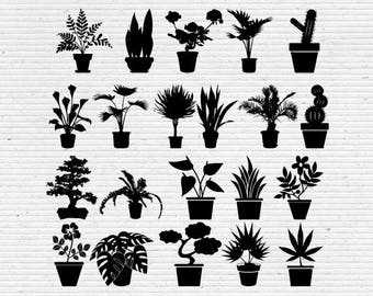 House Plants Silhouette, Digital Cliparts and Vectors in png, svg, dxf and eps