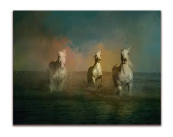 """Photographic print of three white horses galloping on the shore.Mounted art 8"""" x 10"""" , wall art, gift, presented in film sleeve. Digital art"""