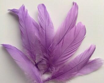 VOGUE GOOSE  Loose Feathers  / Wisteria Purple  / 282