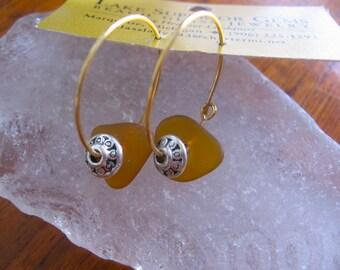 Wonderful Amber ORange  Lake Superior Beach Glass Hoop Earrings