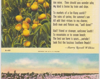 Peaches, Peach Orchard, Orchards, The Legend of the Peach - Vintage Postcard - Postcard - Unused (F1)