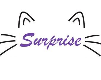Surprise Soap