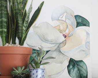Large Magnolia - Art Print