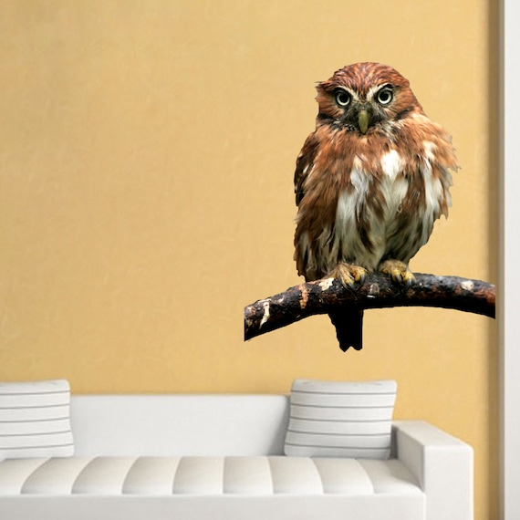 Owl Wall Decal Cute Owl Wall Art Stickers Owl Wall Adhesive