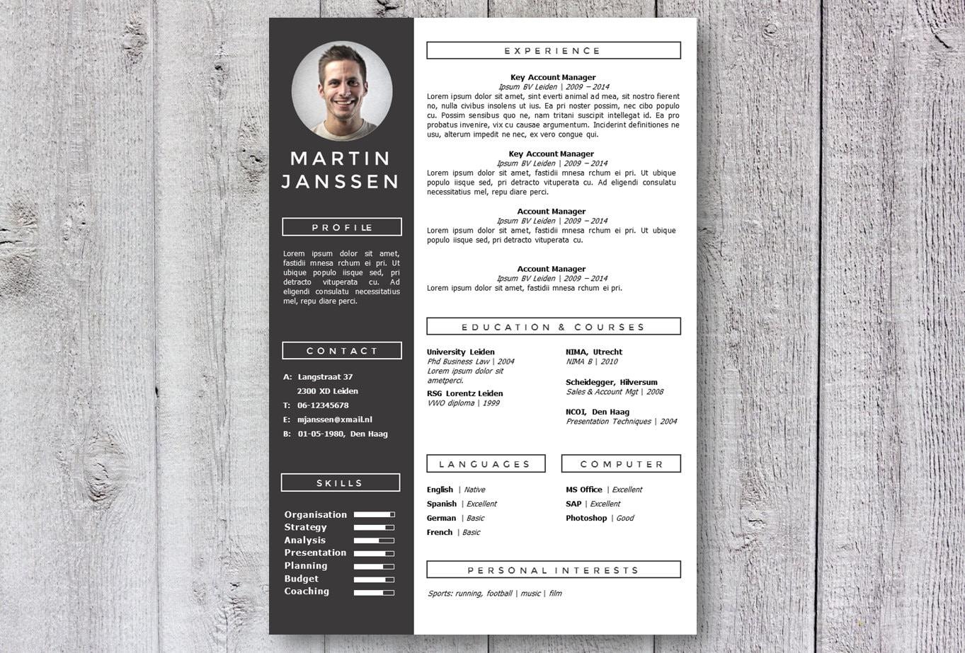 🔎zoom  Modern Resume Styles