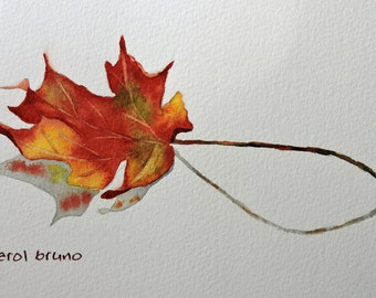 Autumn Leaf-Fine Art-Watercolor Painting of A Single Maple Leaf