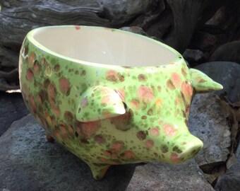Mexican piggy planter, pig, melon green, coral, chocolate, garden, pig, succulent planter, scrubbie holder, sponge holder