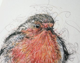 Robin Pen and Ink Illustration Print Limited Edition