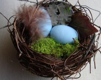 Bird's Nest, Bluebird of Happiness