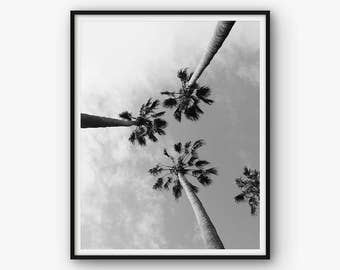 Palm Tree Photography, Palm Photography Print, Printable Palm Tree, Tropical Decor, Tropical Photography, Tropical Photo, Palm Tree Decor