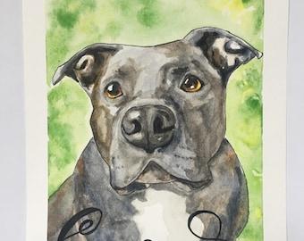 Watercolor Pet Portrait// Custom Portrait and Pet name