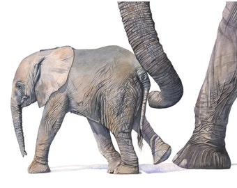 Elephant print of watercolor painting - E0915 - 5 by 7 print - elephant art - nursery art - art for baby - baby animal art