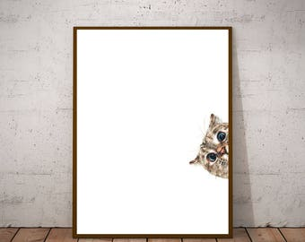 Poster with Cat in the frame. Cat photos to print and hang in the house. Minimal decoration for bedroom or gift