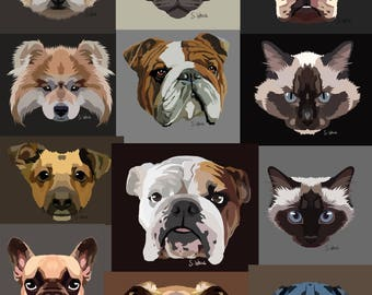 Animal portraits of your darlings. Portraits of pets, dogs and cats