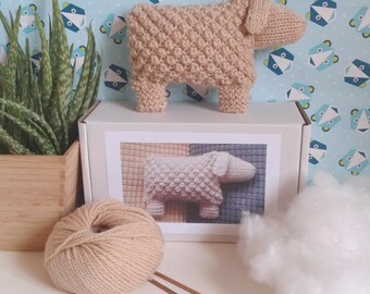 Welsh Mountain Sheep Knitting Kit - Learn to Knit Texture