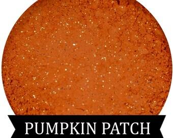 PUMPKIN PATCH  Orange Eyeshadow Fall Halloween Collection