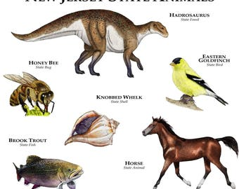 New Jersey State Animals Poster Print