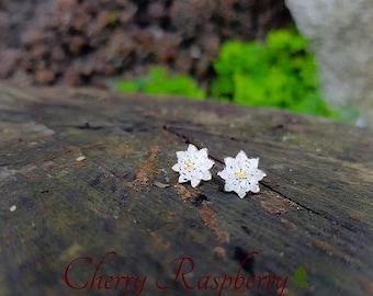 Gracious Daisy Flower Earrings