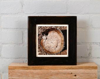 "6x6"" Picture Frame in 1.5"" Reclaimed Cedar with Super Vintage Black Finish - IN STOCK - Same Day Shipping - 6 x 6 Square Frame"
