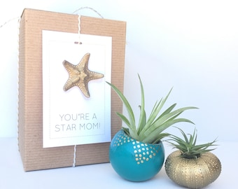 Star Mom Gift Wrap Add On - Make gift giving easier on yourself!