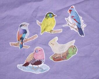 Birds - Sticker Set - Original Art