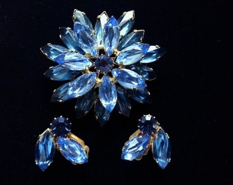 Blue Floral Brooch and Earring Set