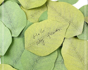 1 Pack Creative Green Leaves Memo Sticker Sticky Notes Message Note Scratch Pads