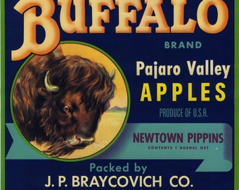 4 Different Apple Crate Labels from Watsonville California Buffalo Appleton Valley Buak
