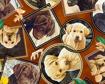 Labrador Portraits - Brown 26641-A by QT Fabrics Cotton Fabric Yardage