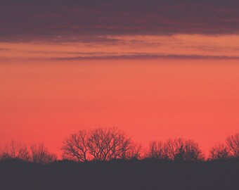 Red Sky Color Photo Print { sunset, clouds, trees, red, pink, purple, silouette, night, wall art, macro, nature & fine art photography }