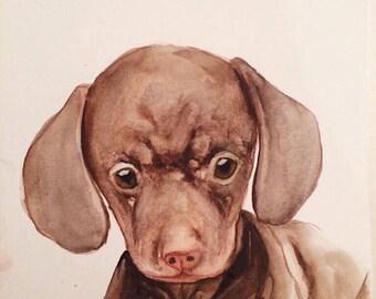 Original pet portrait watercolor
