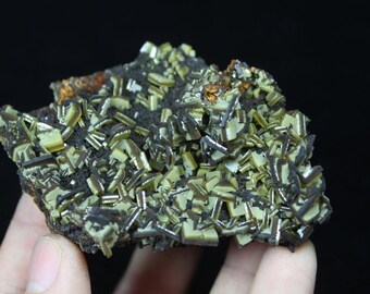 New Find Limited SANDWACH-like Wulfenite Crystal Mineral CM750898