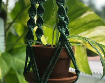 Sea green plant hanger