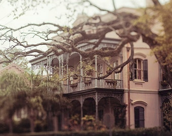"""New Orleans Fine Art Photography """"Southern Beauty"""" architecture, garden district, wall art  spring photograph, romantic, dreamy, mysterious"""