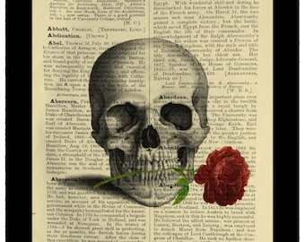 Gothic Skull with Rose in Teeth Horror Fantasy - Dictionary Print Book Page Art