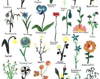 Unseen Flowers