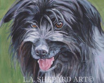 "Pyrenean Shepherd dog PORTRAIT art canvas PRINT of LAShepard painting 8x8"" pyr shep"