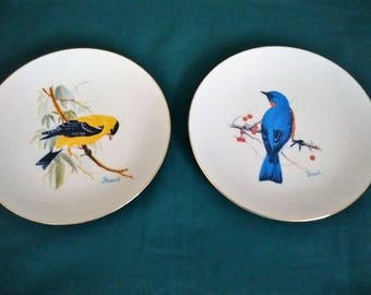 "Bird plates, National Wildlife Federation, 8 1/2"" gold-rimmed, designed by Charles Frace, Vintage"
