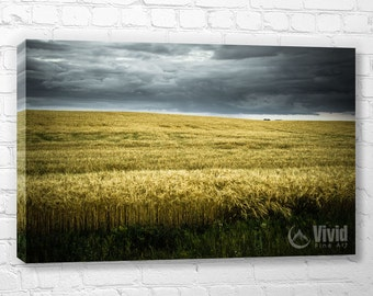 Plains canvas art, prairie picture, wheat field wall decor, living room wall, multi panel art, large canvas print, yellow and grey, 4 feet