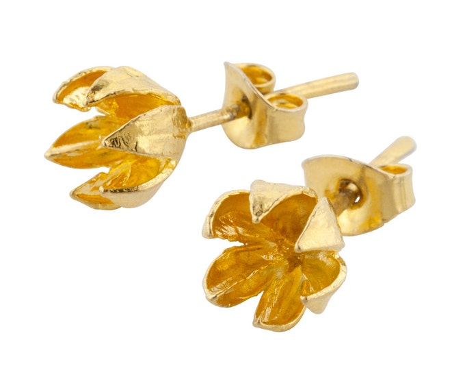 Small Gold Seed Pod Stud // Crepe Myrtle Earrings