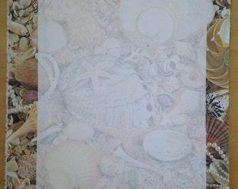 8.5x11 Seashell Framed Paper