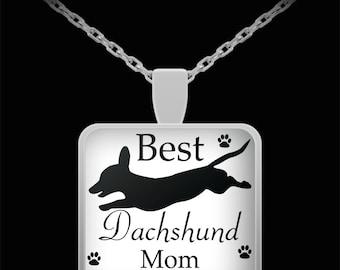 Best dachshund mom ever