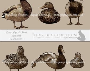 Sepia Tone Ducks: Clip Art, set of 6 images