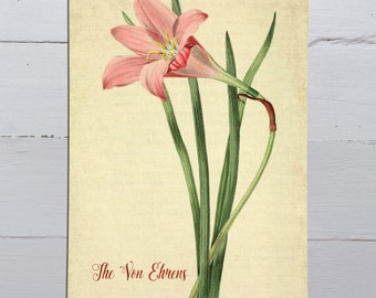Vintage Floral Canvas Scroll-Personalized Wall Art