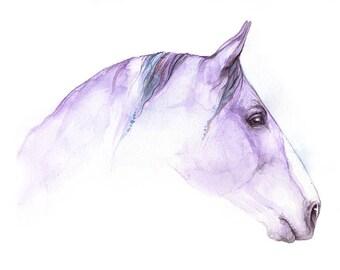 purple horse, equine art, equestrian, Original watercolor painting