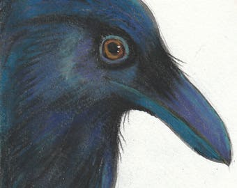 handsome raven blank greeting card