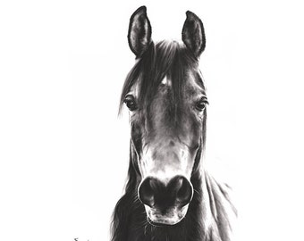 HORSE OIL PAINTING - horse print, equestrian gifts, horse wall art, black and white prints, black stallion, horse painting, horse artwork