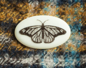 Handmade butterfly brooch ... fused glass with an intricate etched design ... insect jewellery
