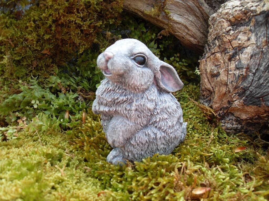 20 Bunny Garden Decor Pictures - Best Image Home Interior - orai.us