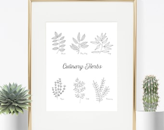 Kitchen Herbs Print, Culinary Herbs, Herbs and Spices, Minimalist Kitchen Art, Hand Drawn Herbs
